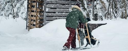 Trottinettes des neiges Jouvence